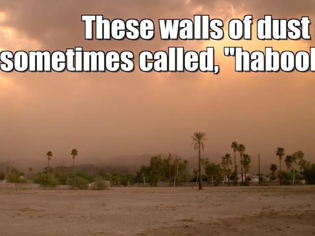 Dust storm covers Southwest