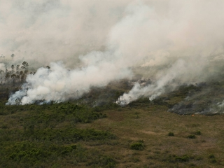 Massive wildfire prompts evacuations in Georgia