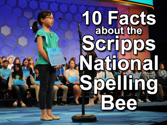Stafford eighth grader gears up for national spelling bee