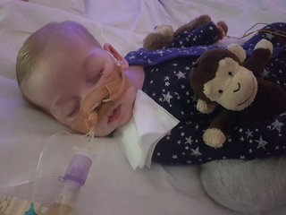 Baby Gard's parents want to take him home to die