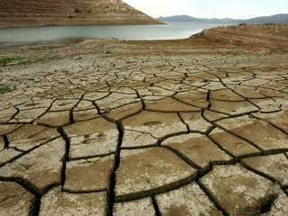 2016 predicted to be hottest year on record