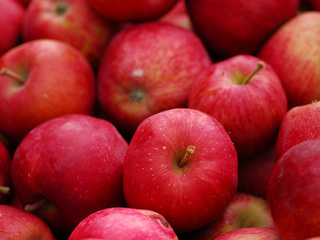 Woman charged $500 for bringing apple off plane