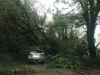 3 dead as ex-hurricane Ophelia hits Ireland