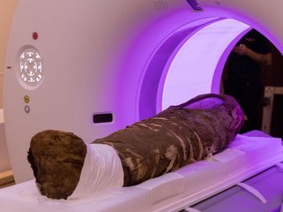 Unwrapping mummy secrets with X-rays