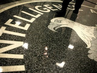 Ex-CIA worker might've helped kill US assets