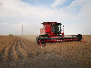 NYS: $38M available to help farmers protect land