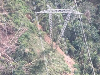 Tree cuts power from thousands of Puerto Ricans