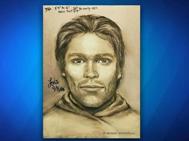 Stormy Daniels unveils sketch of man who 'threatened' her