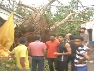 Dozens dead after powerful storms thrash India