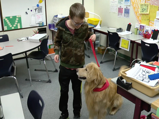 Dogs help students beyond play
