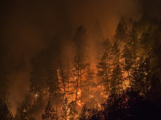 Power lines linked to some 2017 Calif. wildfires