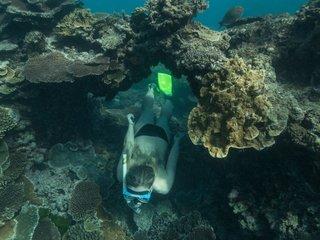 Hawaii wants to ban sunscreens that bleach coral